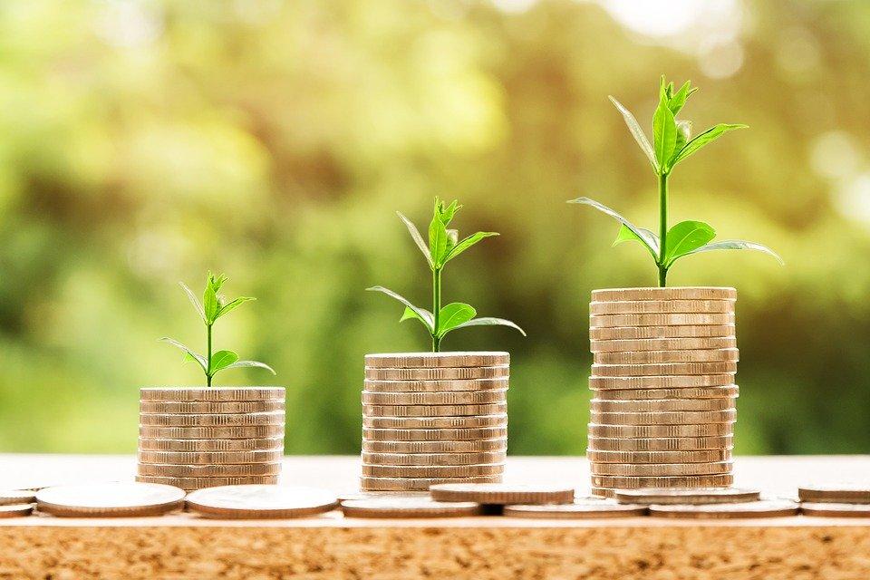 Za vyššími zisky stojí franšízové podnikání